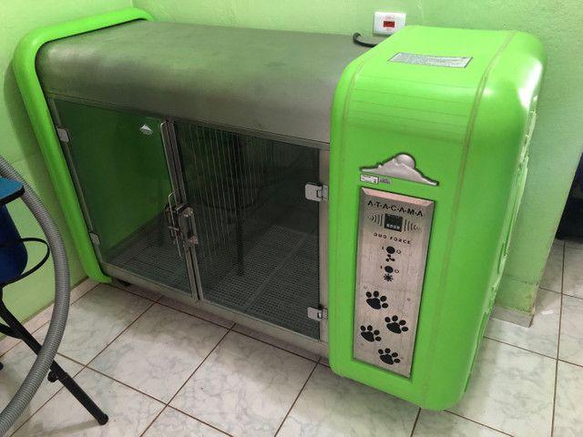 Máquina de secar Atacama super wind