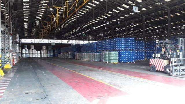 Galpão logístico à venda às margens da BR 153 GO - Foto 14