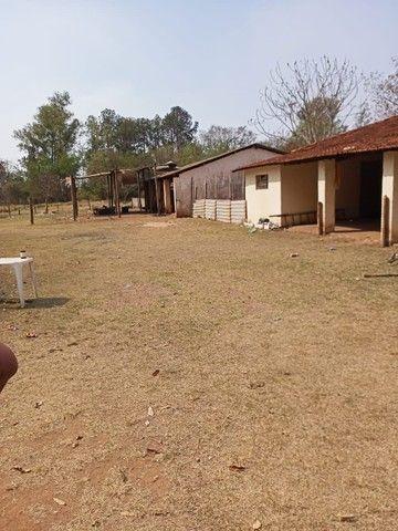 Chácara 20mil m2, 2 Casas Simples, 2 Dormitórios, Pasto, Lago com Peixes, Chiqueiro, Ranch - Foto 16