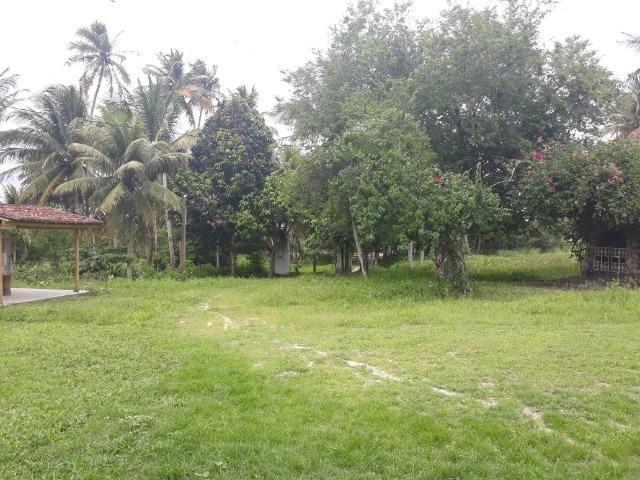 Oportunidade de Chácara, com 5,2 ha, há margem da RN 316, em Monte Alegre/RN - Foto 15