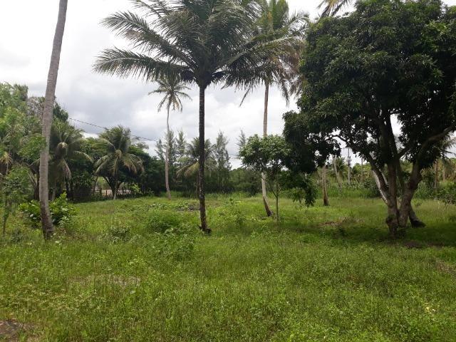 Oportunidade de Chácara, com 5,2 ha, há margem da RN 316, em Monte Alegre/RN - Foto 5