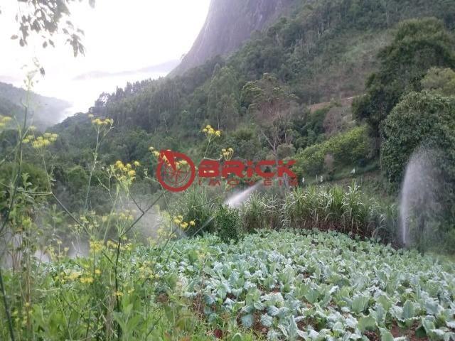 Sítio em teresópolis com cachoeira, nascente, terra para plantação e árvores frutíferas. - Foto 8