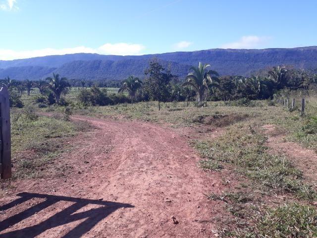 Fazenda com 784,77 hectares entre Jangada e Rosário Oeste - Foto 17