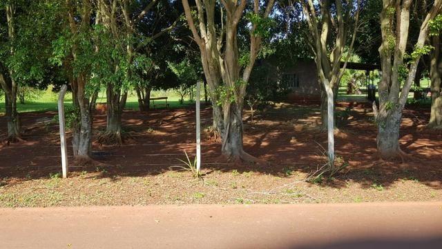 Chácara 12.500m² Alto da boa vista Próximo três lagoas Foz do Iguaçu - Foto 3