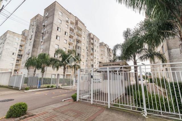 Apartamento para alugar com 2 dormitórios em Igara, Canoas cod:300630 - Foto 13