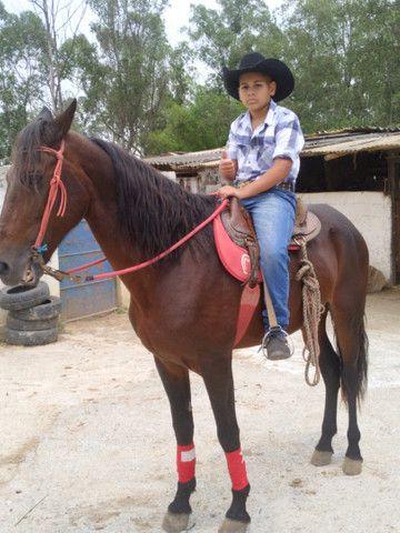Cavalo manga larga marcha pikada 7000 - Foto 3