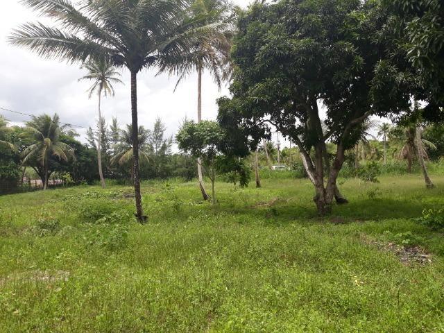 Oportunidade de Chácara, com 5,2 ha, há margem da RN 316, em Monte Alegre/RN - Foto 6