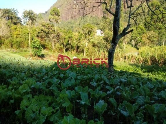 Sítio em teresópolis com cachoeira, nascente, terra para plantação e árvores frutíferas. - Foto 9