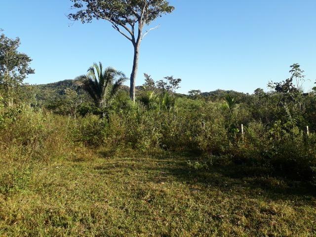 Fazenda 866 Hectares apos 35 km da Agrovila das Palmeiras - Foto 15