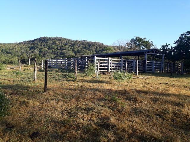 Fazenda 866 Hectares apos 35 km da Agrovila das Palmeiras
