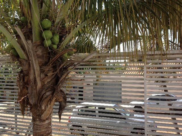 Casa em caldas na laje,piscina,barracao no fundo com divisão,bem localizada Itaguaí. - Foto 6
