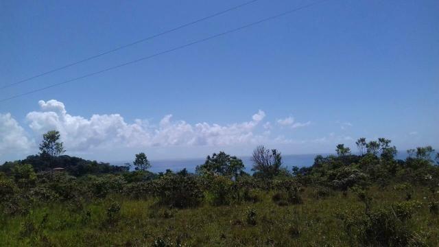 Área rodovia Ilhéus -Itacaré