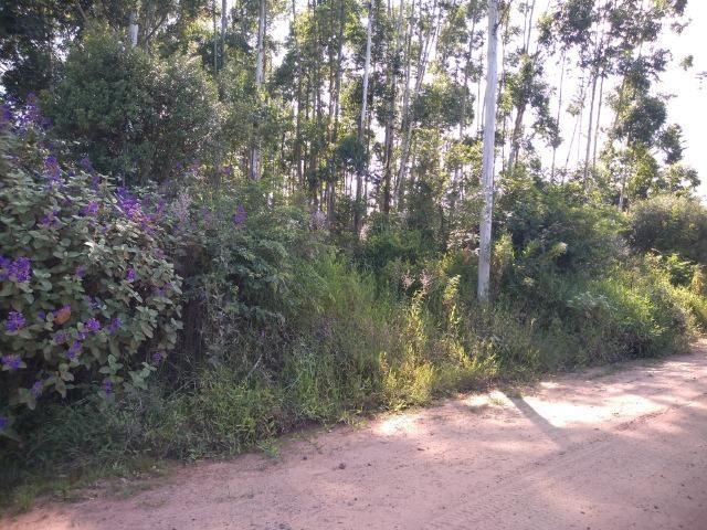 Chácara na localidade de Paquete - Capela de Santana