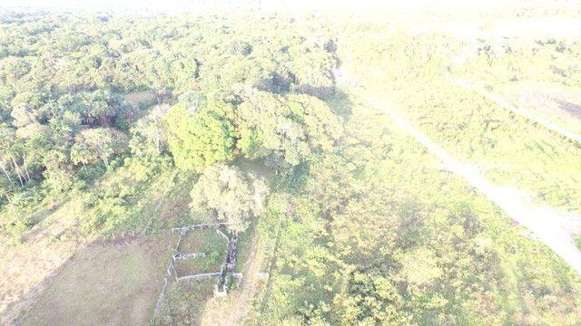 R$350 mil reais 17 hectares em Castanhal -Pa com casa boa de alvenaria - Foto 7