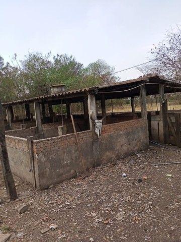 Chácara 20mil m2, 2 Casas Simples, 2 Dormitórios, Pasto, Lago com Peixes, Chiqueiro, Ranch - Foto 6
