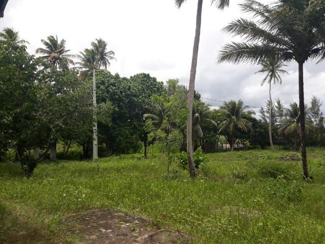Oportunidade de Chácara, com 5,2 ha, há margem da RN 316, em Monte Alegre/RN
