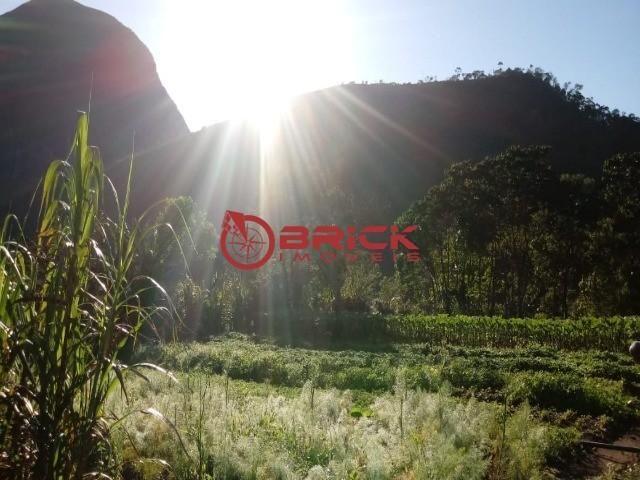 Sítio em teresópolis com cachoeira, nascente, terra para plantação e árvores frutíferas. - Foto 3