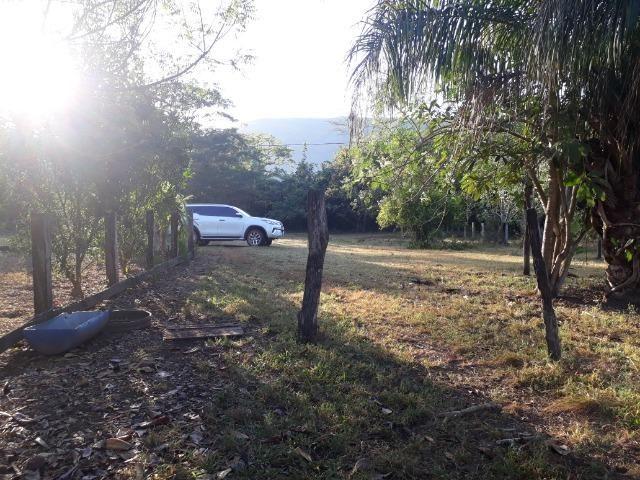 Fazenda 866 Hectares apos 35 km da Agrovila das Palmeiras - Foto 10