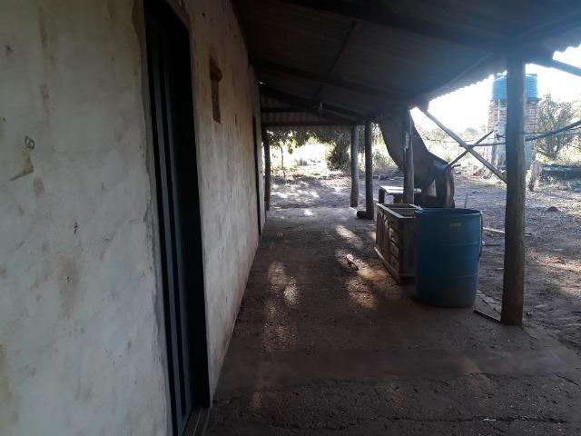Chácara com 38.2 Hect em Acorizal - Foto 7
