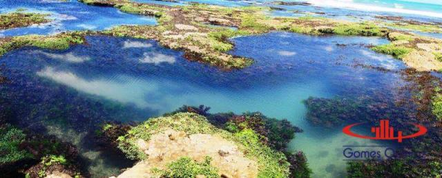 Bangalô residencial à venda, Flexeiras Guajiru, Trairi - BG0002. - Foto 2