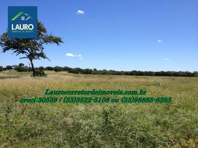 Fazenda com 9.800 hectares em Montalvânia MG - Foto 13
