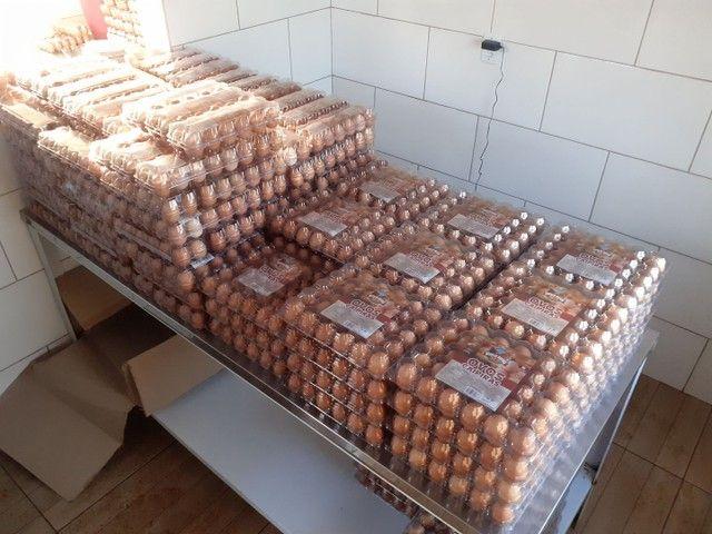 Ovos caipira agroecológico  - Foto 5
