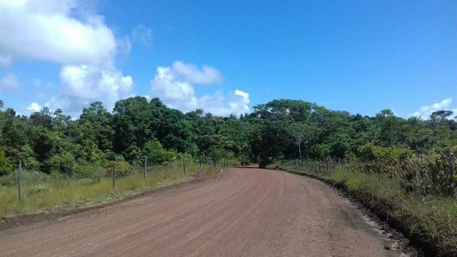 Área rodovia Ilhéus -Itacaré - Foto 3
