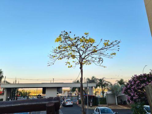 Apartamento para alugar no bairro Jardim Planalto - São José do Rio Preto/SP - Foto 7