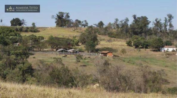 Maravilhosa Fazenda à Venda em Limeira/SP ? 45 alqueires ? À 150 km de São Paulo ? Confira - Foto 4