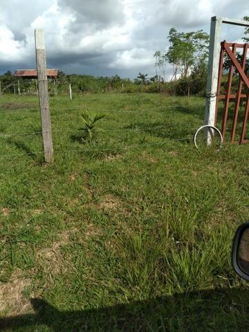 Terreno no Mutum negociavel - Foto 2