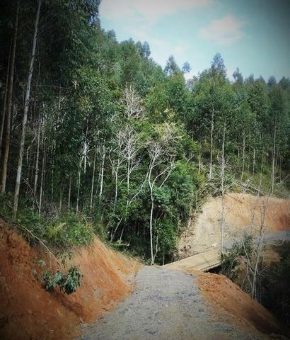 Alfredo Wagner , Serra Catarinense 8,0 hectares - Foto 7