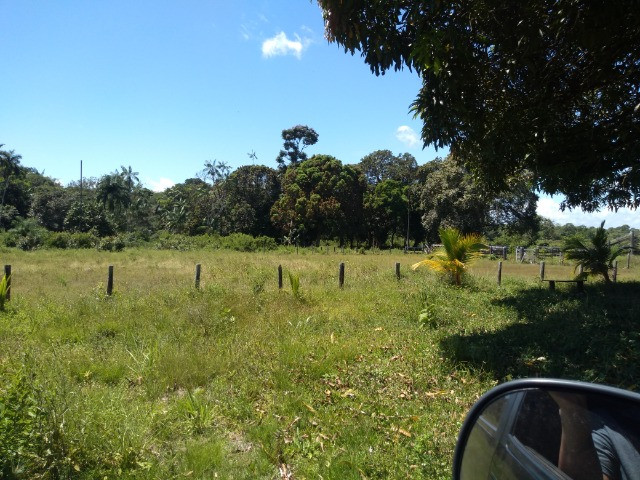 R$350 mil reais 17 hectares em Castanhal -Pa com casa boa de alvenaria - Foto 10