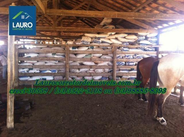 Fazenda com 9.800 hectares em Montalvânia MG - Foto 12