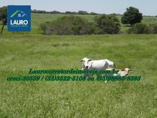 Fazenda com 9.800 hectares em Montalvânia MG - Foto 17