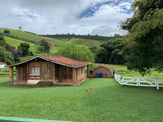 Maravilhoso Sítio de 11 hectares, em São José do Alegre-Mg - Foto 14
