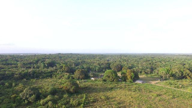 R$350 mil reais 17 hectares em Castanhal -Pa com casa boa de alvenaria - Foto 5