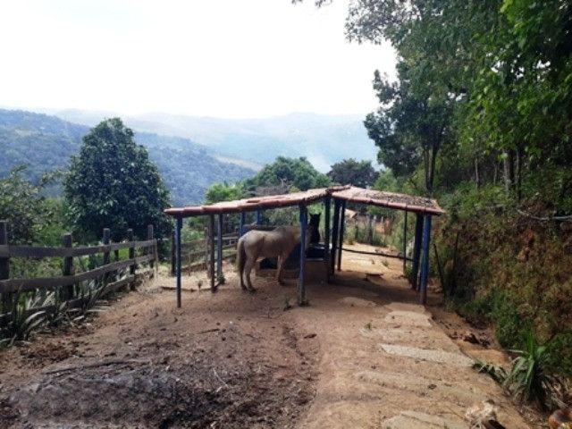 Casa - Macacos - Cód: 324 - Foto 16