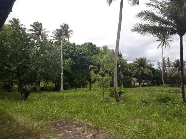 Oportunidade de Chácara, com 5,2 ha, há margem da RN 316, em Monte Alegre/RN - Foto 2