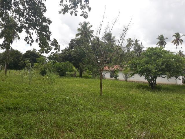 Oportunidade de Chácara, com 5,2 ha, há margem da RN 316, em Monte Alegre/RN - Foto 12