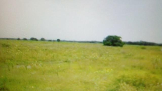 Fazenda de 87.945 hectares, em pocone no pantanal Mato-Grossense ! - Foto 7