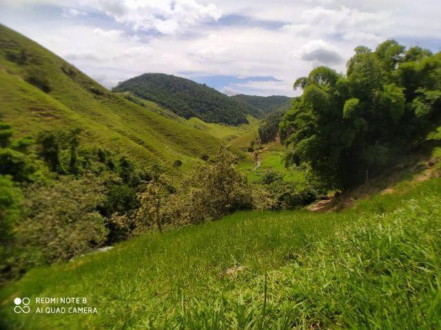 Vendo Fazenda com 27,5 Hectares em Rio Calçado - Guarapari - Foto 15
