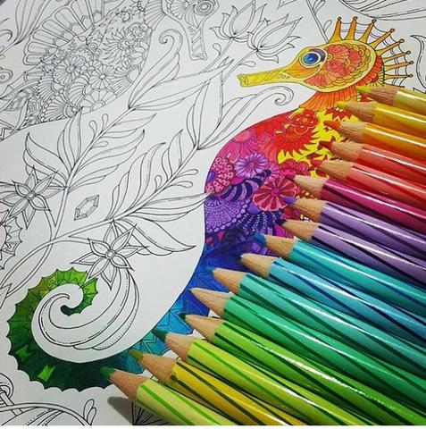 Floresta Encantada E Jardim Secreto Colorir Antiestresse 2 Por R 3000
