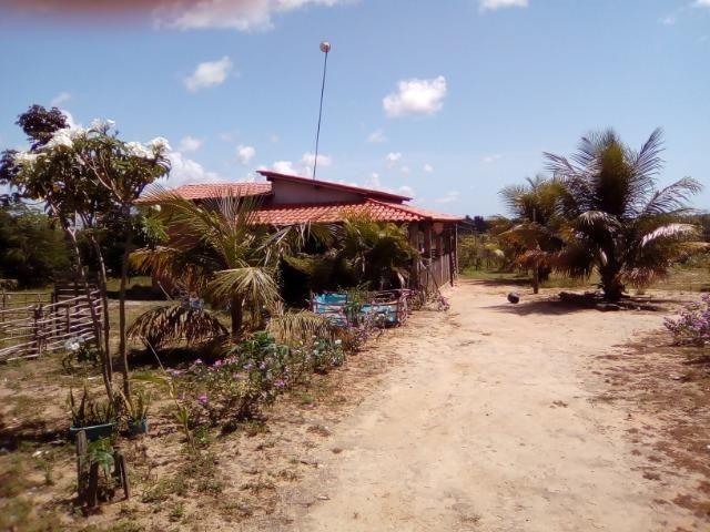 Oportunidade: Sítio na Linha Verde (Cidade do Conde) Próximo a Rios