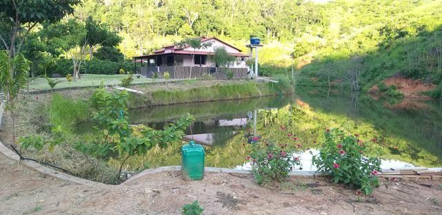 Vendo Sitio - 20.000m² - Córrego da Puaia/Colatina - 4km do bairro Columbia - Foto 3