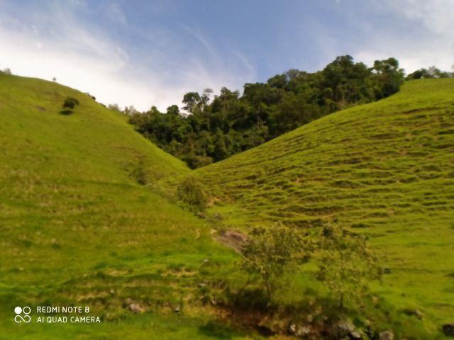 Vendo Fazenda com 27,5 Hectares em Rio Calçado - Guarapari - Foto 9