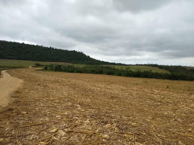 Fazenda em Dom Eliseu, 400 Alqueires, com 200 de soja. (soja ) - Foto 2