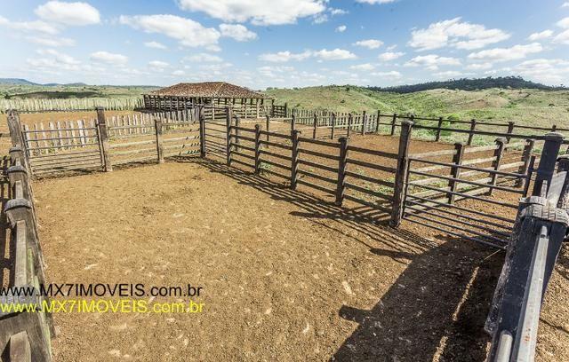 Fazenda pecuária de 6.400 Hectares. Capacidade pra 8.000 bois. - Foto 12