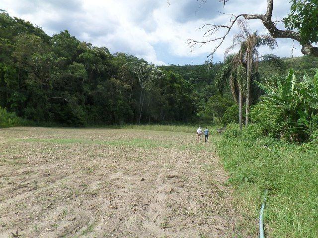 154 - Área de terra em Providência - Foto 4