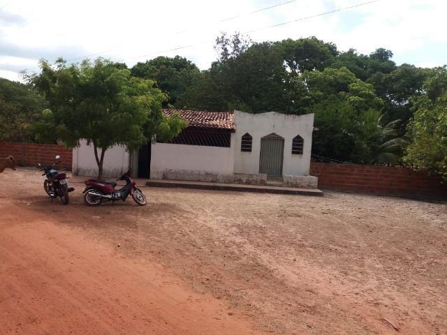 Vendo terreno de 13 hectares a 100Km de Parnaiba-PI - Foto 2