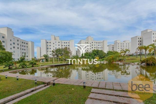 Apartamento com 2 dormitórios à venda, 50 m² por r$ 240.000 - pinheirinho - curitiba/pr - Foto 3
